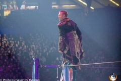 WRESTLE-KINGDOM-13-12