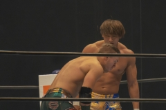 WRESTLE-KINGDOM-13-15