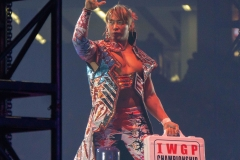 WRESTLE-KINGDOM-13-47