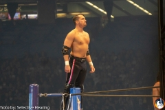 WRESTLE-KINGDOM-13-5