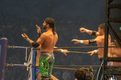 WRESTLE-KINGDOM-13-6