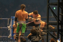 WRESTLE-KINGDOM-13-7